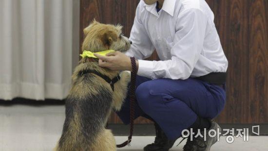 개 기르는 '수갑 찬 소년들'…동물에게 배우는 사랑과 신뢰