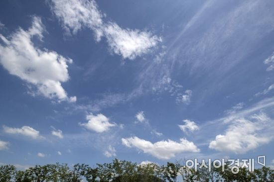 [포토] 하늘만 보면 '가을'