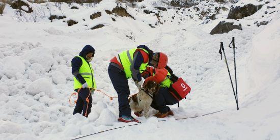 네팔 안나푸르나 실종자 4명 수색, 잠정 중지…수색 인력·장비 운용 어려움