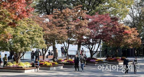 [포토]'남산의 가을'