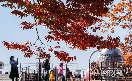 [포토]남산의 가을