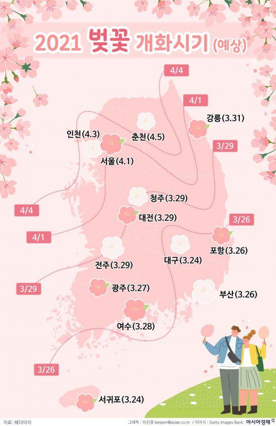 [인포그래픽]2021 벚꽃 개화시기(예상)