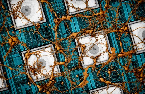 삼성전자, 뇌 닮은 '차세대 인공지능 뉴모로픽 반도체' 비전 제시