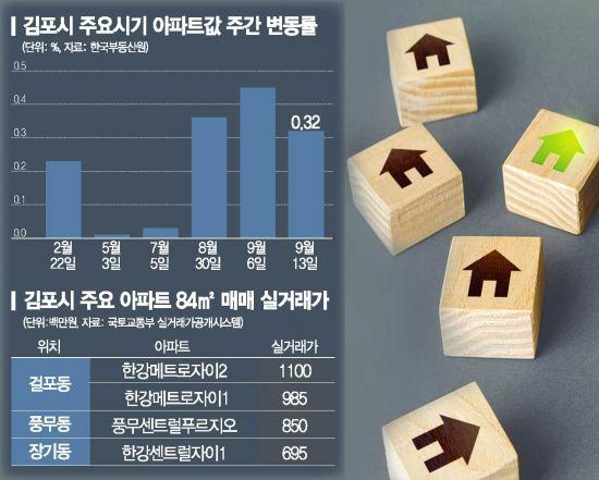 다시 뛰는 김포 아파트… 국민평형 '10억 천장' 뚫었다